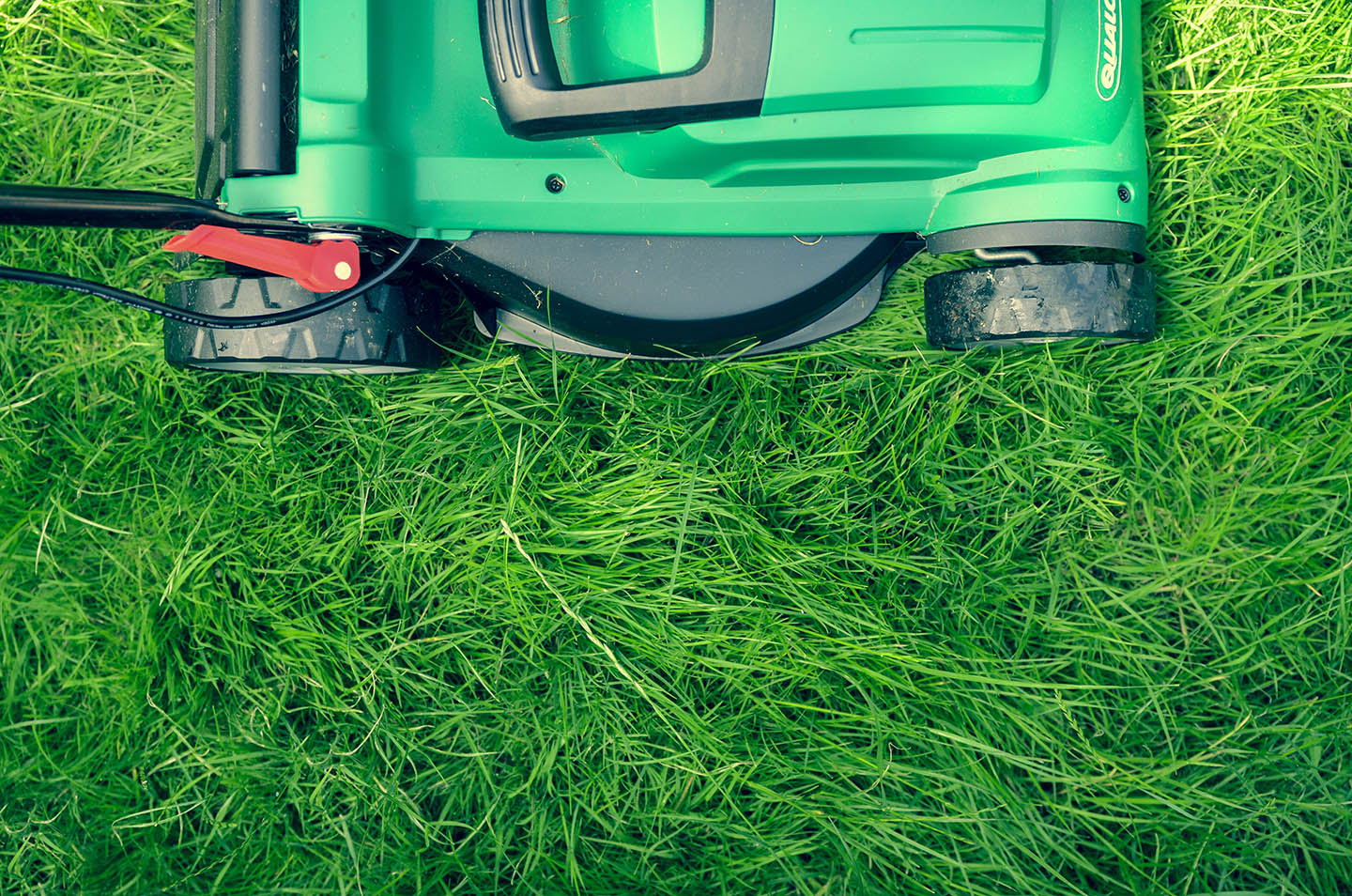 green push mower and grass